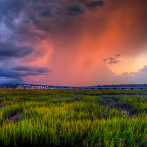 Fire and rain by jim crotty