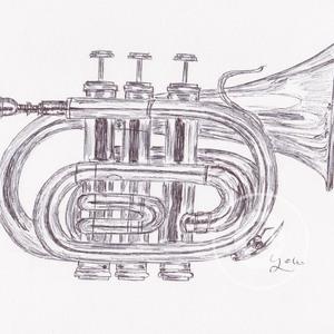 Jazz 300 1cr