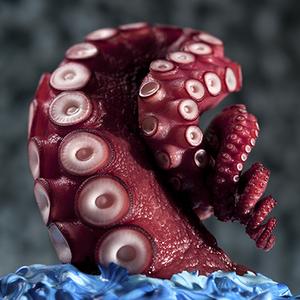 Max shuster.octopus wave.flkr