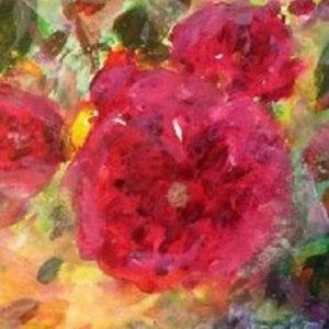 Rose louis   zavier   auguste miellez aase birkhaug niume blog