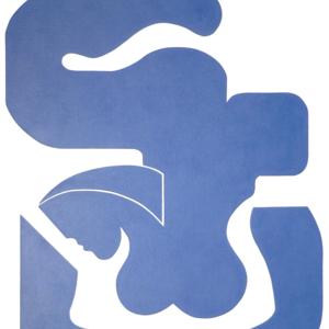 2012 bleu sensation 70 x 90 m 2
