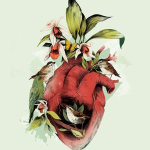 Heart of birds la scarlatte